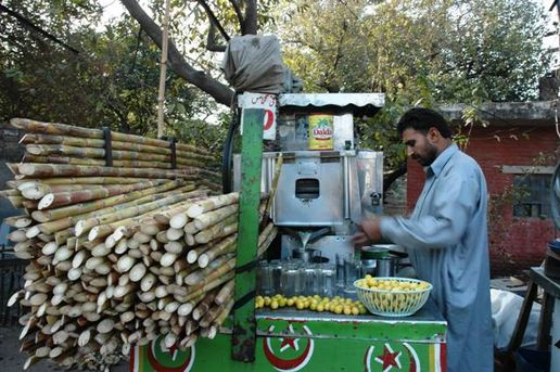 Poisonous sugar cane vendor: